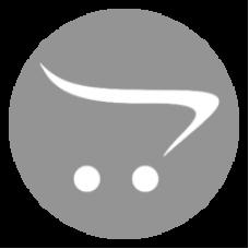 Bas-IP VIZIT модуль